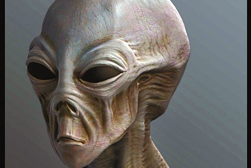 mimozemstan.jpg