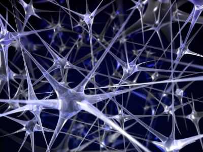 neural-network1.jpg