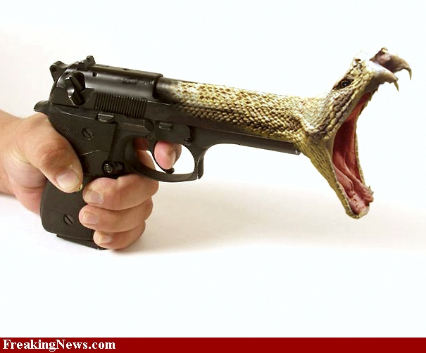 snake-pistol.jpg